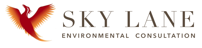 SkyLane Environmental Consultation Logo